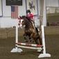 Mixing Horses, HR Studies