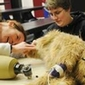 Veterinary specialist from Cornell University speaks at SUNY Canton