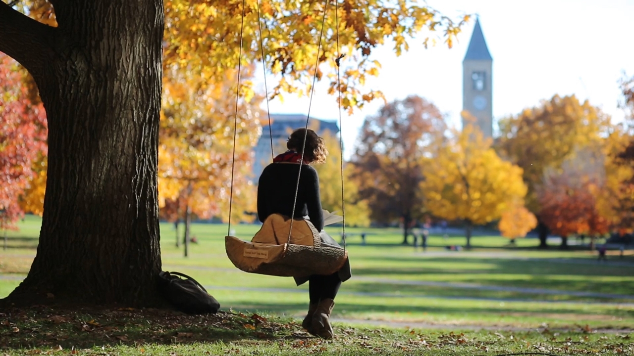 student reads while sitting in a swing on the quad