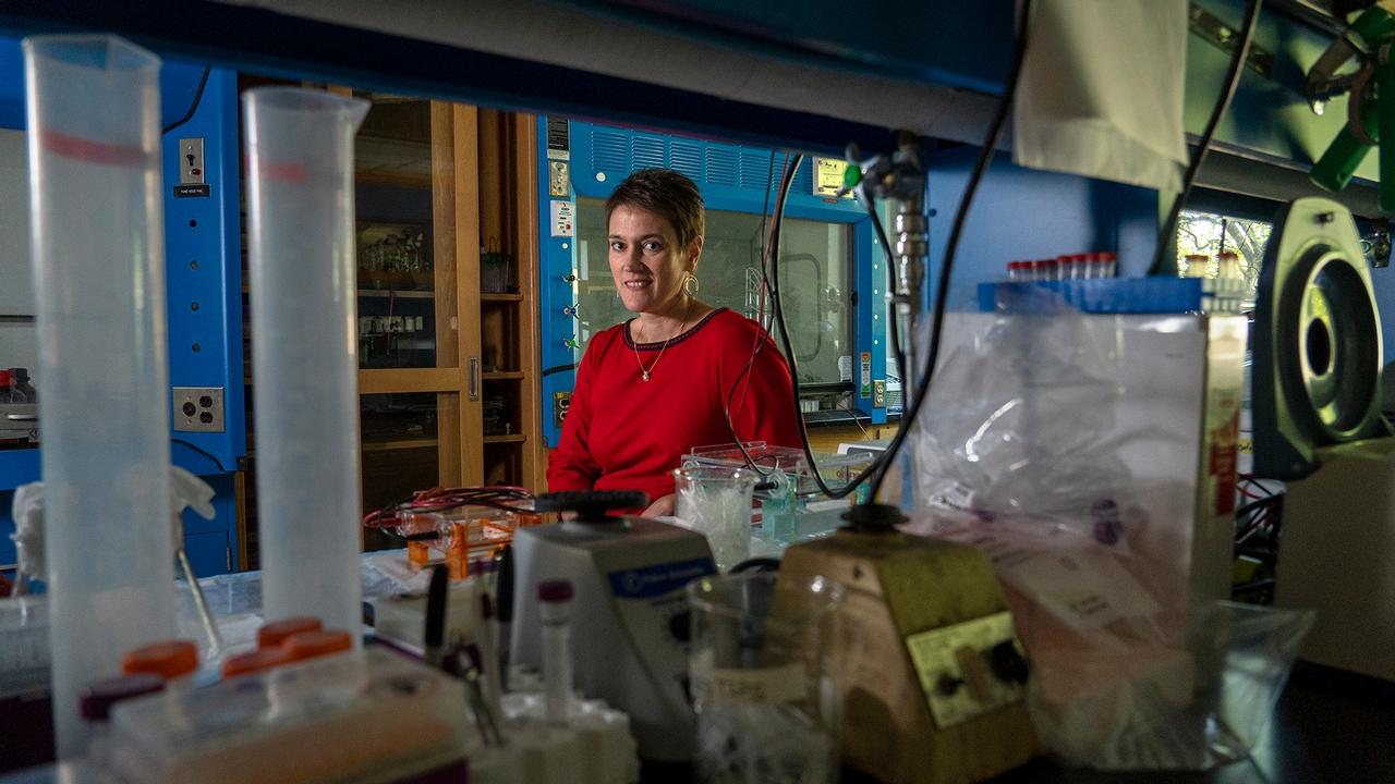 Martha Field in the lab