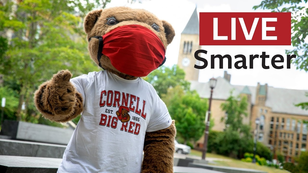 Cornell mascot Touchdown wearing a mask.