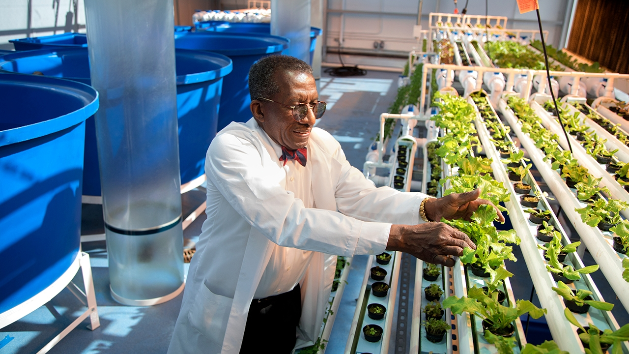 Philson Warner leads a tour through the FFHS's hydroponics greenhouse and aquaculture facility.