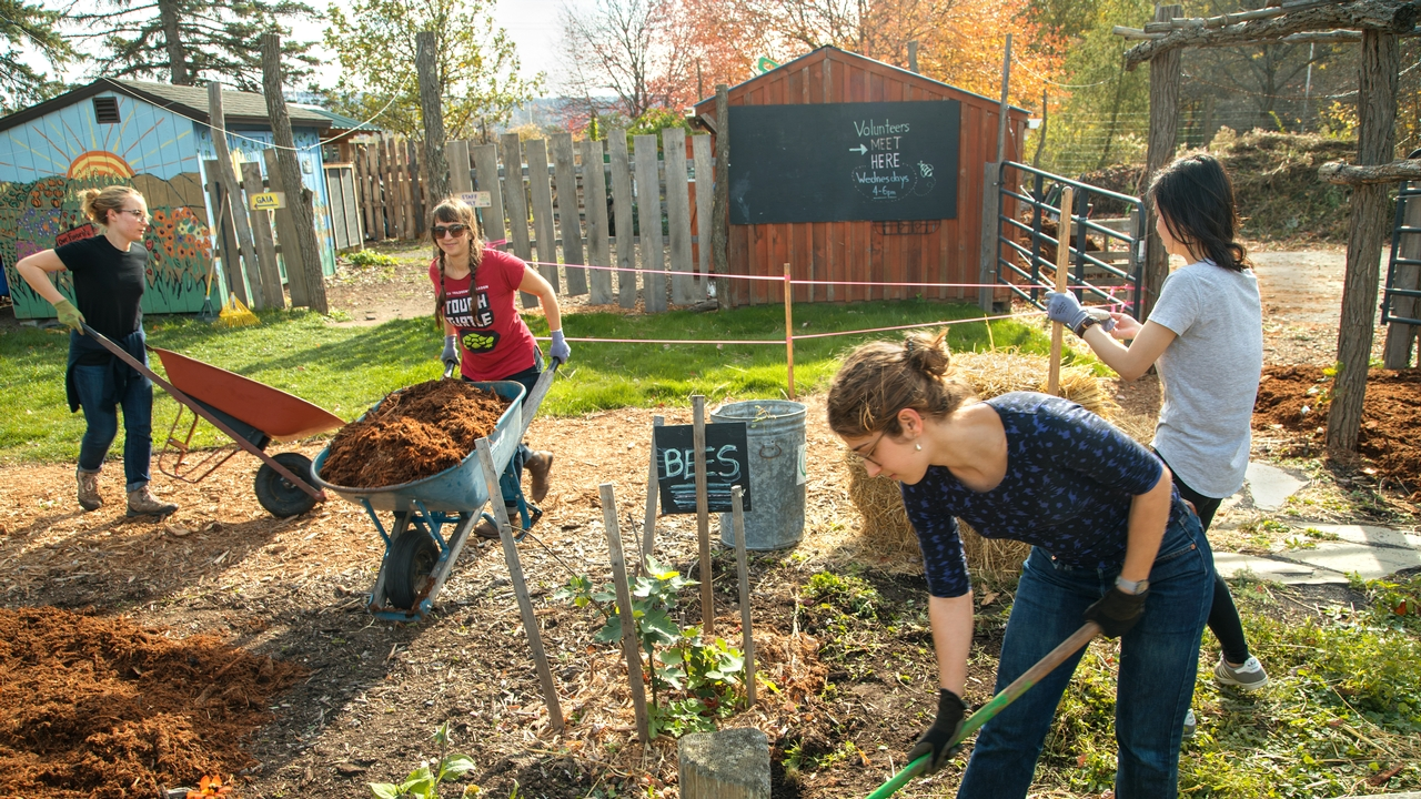 Students help with yard work at the Ithaca Children's Garden during the Into the Streets, Cornell's largest student-directed, public service event.