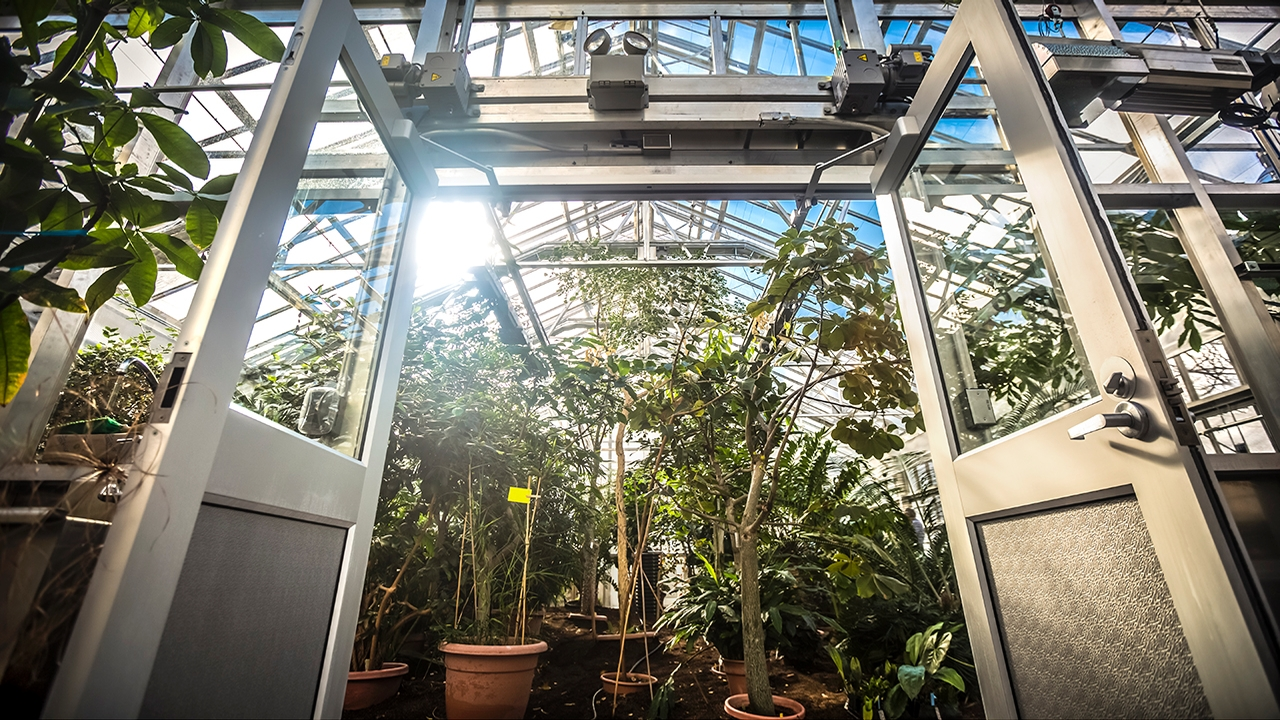 Liberty Hyde Bailey Conservatory reopens
