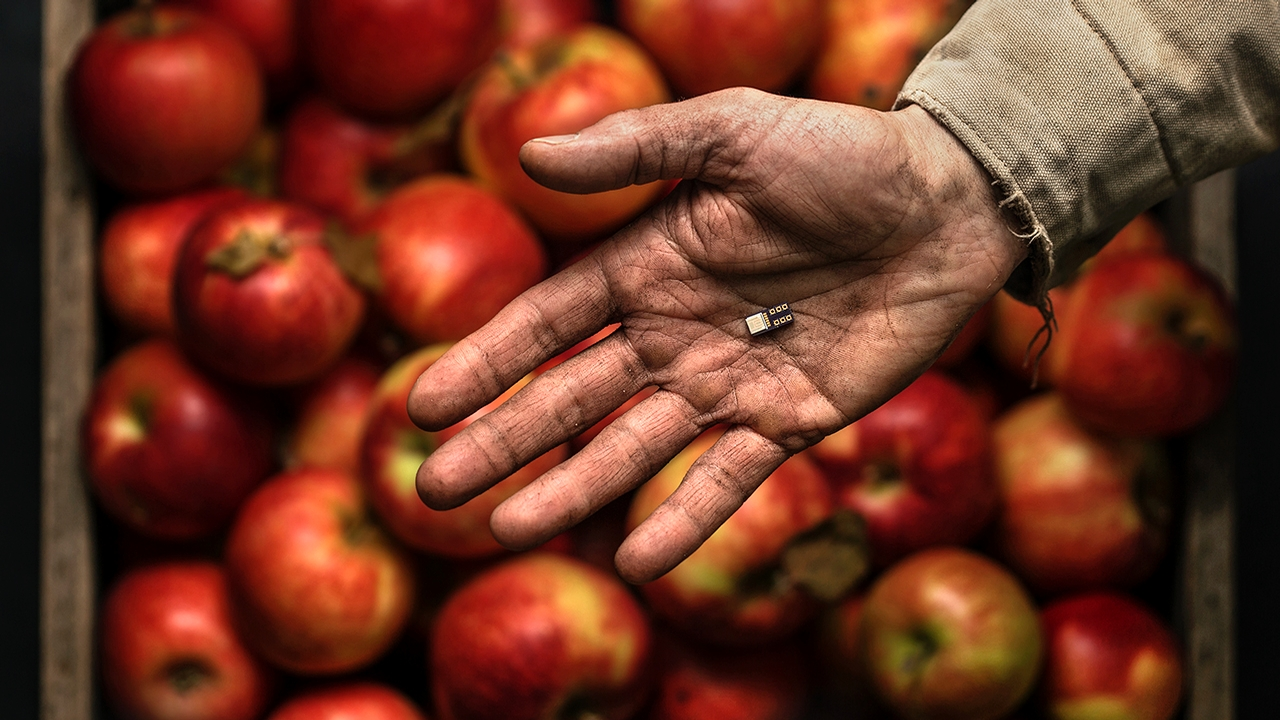 water sensor in the palm of a hand, with apples in the background
