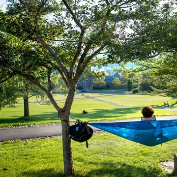 a student sits on a blue hammock overlooking the green lawn and trees of Libe Slope at Cornell University