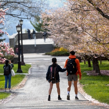 Two students roller blade and two other take pictures of pink Cherry Blossoms on a path near Sage Chapel at Cornell Univeristy