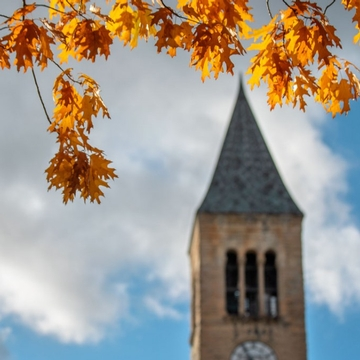 Golden leaves hang over McGraw Clock Tower.