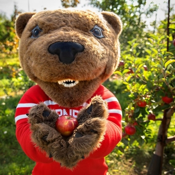 Touchdown picks an apple at Cornell orchards