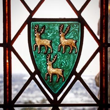 a.D.怀特图书馆的彩色玻璃窗
