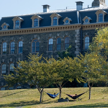 Cornell students relax on hammocks on Libe Slope