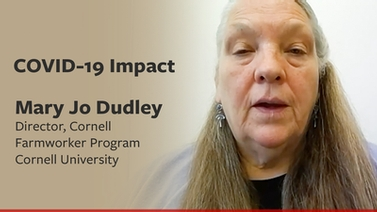 COVID-19 impact: Mary Jo Dudley on vulnerable farmworkers