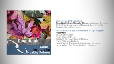 Mental & Behavioral Health Design Roundtable