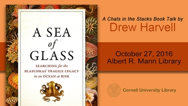 title slide featuring 'A Sea of Glass' book cover