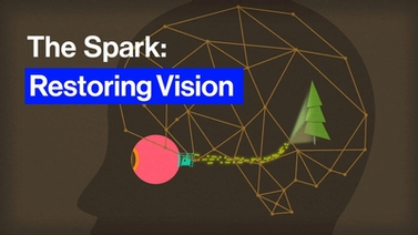 title screen reads, 'The Spark: Restoring Vision'
