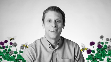 Scott McArt surrounded by illustrations of pollinators