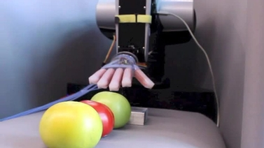 robotic hand with three different tomatoes
