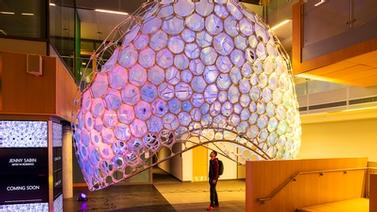 Cornell's Jenny Sabin turns AI into art
