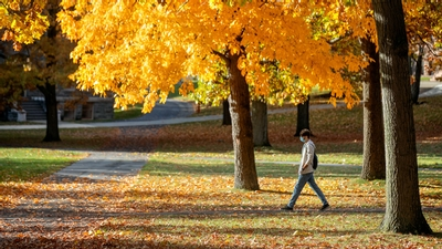 A student walks across the Arts Quad during fall at Cornell University