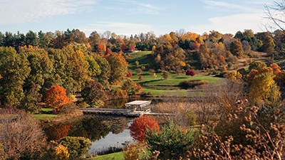 The F.R. Newman Arboretum in fall.