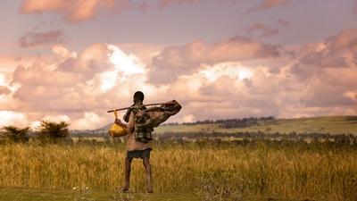 A man walks alongside a field near Asella, Ethiopia.