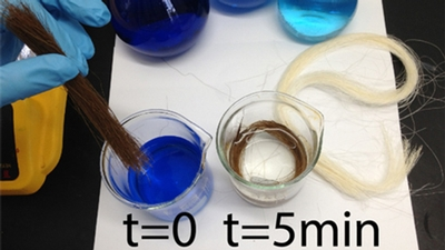 researcher dips fibers in dye-filled water