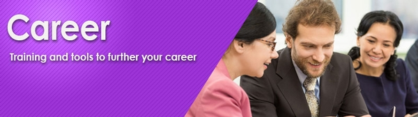 Career banner - a young man and two women work on a project together